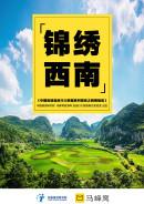 中國省域自由行大數據系列報告之西南地區